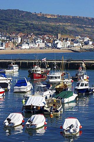 Harbour and Town, Lyme Regis, Dorset, England, United Kingdom, Europe