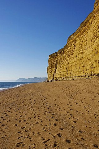 Beach and cliffs, Burton Bradstock, Jurassic Coast, UNESCO World Heritage Site, Dorset, England, United Kingdom, Europe