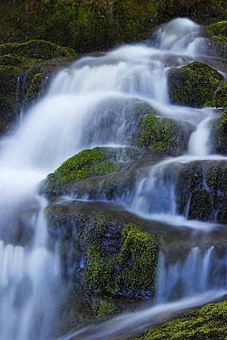 Waterfall, Glen Artney, near Crieff, Perthshire, Scotland, United Kingdom, Europe