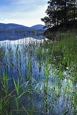 Derwent Water, Lake District National Park, Cumbria, England, United Kingdom, Europe