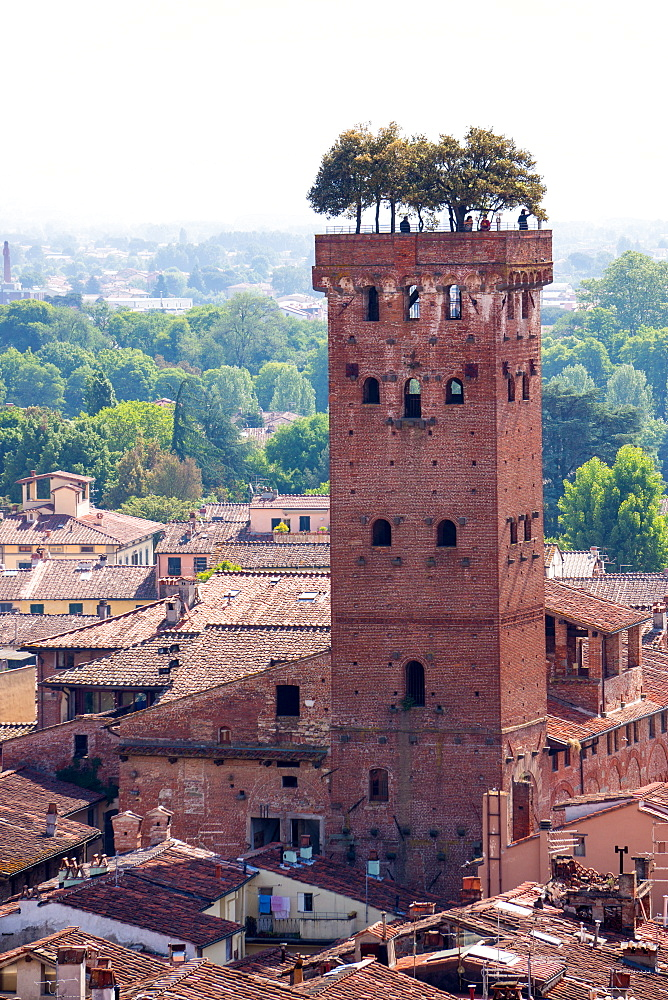 Torre Guinigi as seen from Torre delle Ore, Lucca, Tuscany, Italy, Europe