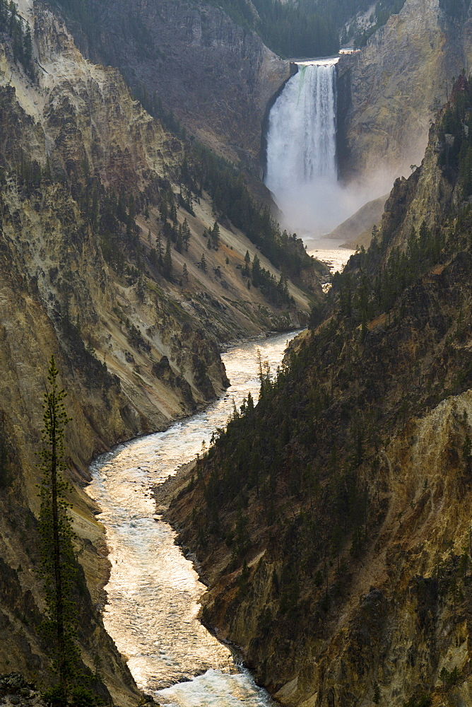 Yellowstone River and Falls, Yellowstone National Park, UNESCO World Heritage Site, Wyoming, United States of America, North America