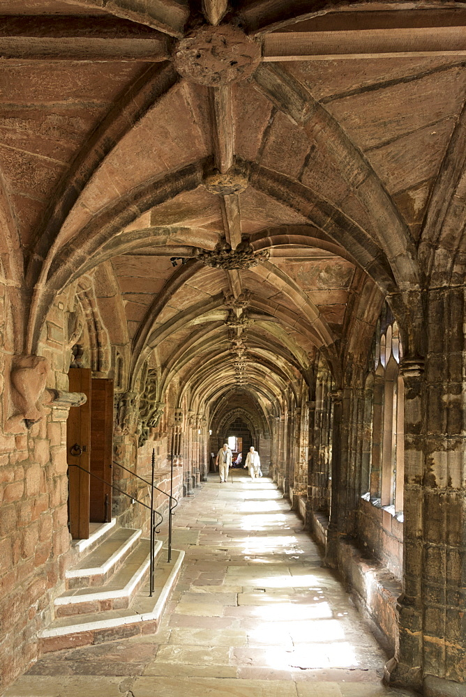 Chester Cathedral cloisters, Cheshire, England, United Kingdom, Europe - 489-1654