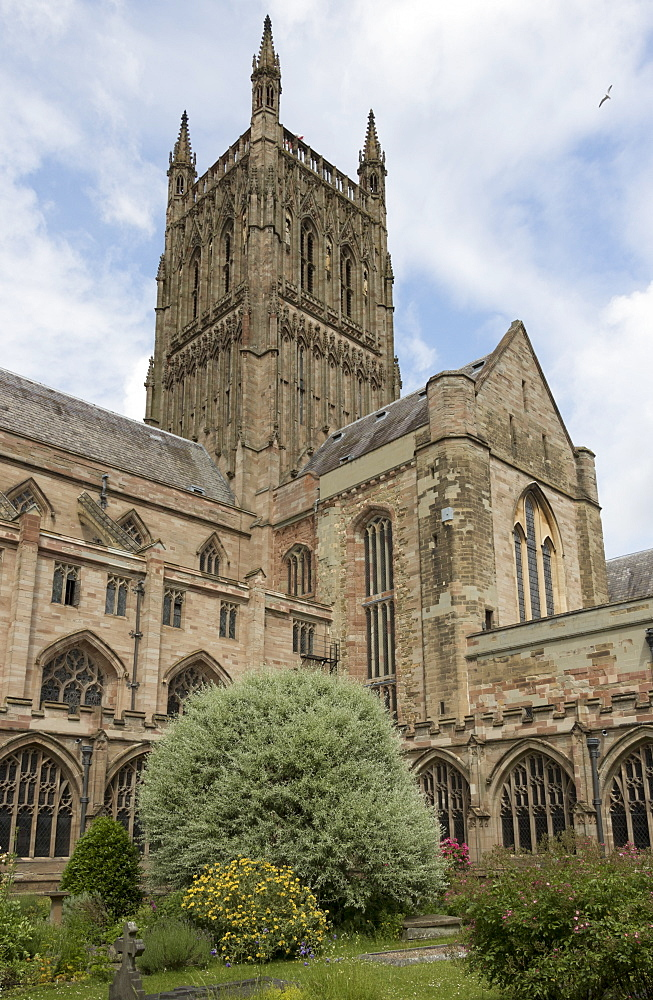 Tower and South transept from cloister garth, Worcester Cathedral, Worcester, England, United Kingdom, Europe - 489-1676