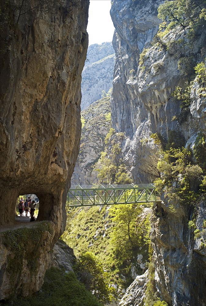 Footbridge over the Cares Gorge, Picos de Europa, Castilla y Leon, Spain, Europe