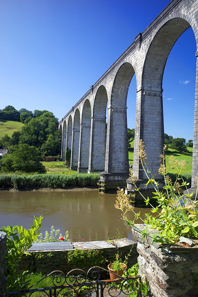 Calstock railway viaduct, Tamar Valley, Cornwall, England, United Kingdom, Europe - 492-3555