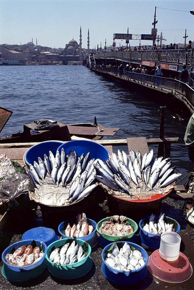 Fish market, Galata Bridge, Istanbul, Turkey, Europe, Eurasia