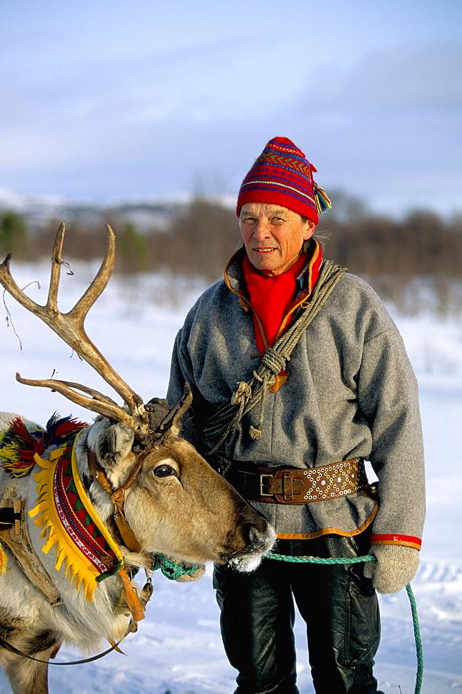 Reindeer sledging, Roros, former copper town, Norway, Scandinavia, Europe