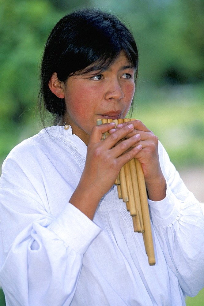 Playing the rondador or bamboo panpipe, Hacienda Pinsaqui, north of Quito, Ecuador, South America