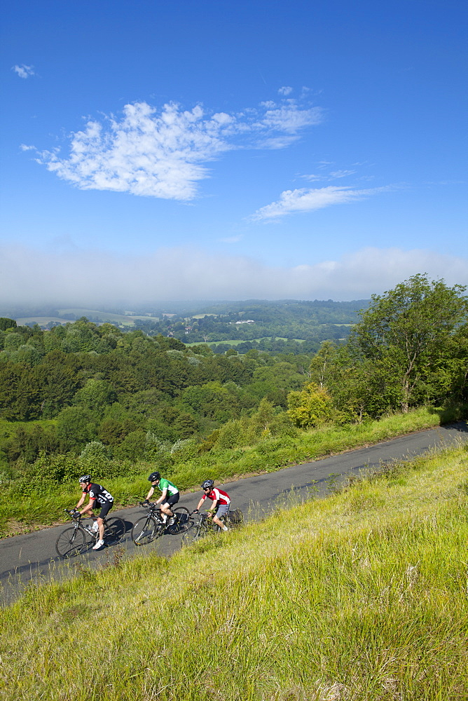 Cyclists on The Zig Zag, Box Hill, Site of 2012 Olympic cycling road race, Surrey Hills, North Downs, Surrey, England, United Kingdom, Europe - 526-3736
