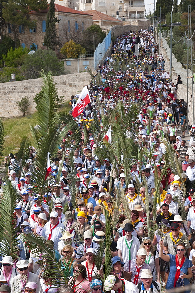 The Palm Sunday procession on its route from Betphage to Sainte Anne in the Old City through the Mount of Olives, Jerusalem, Israel, Middle East