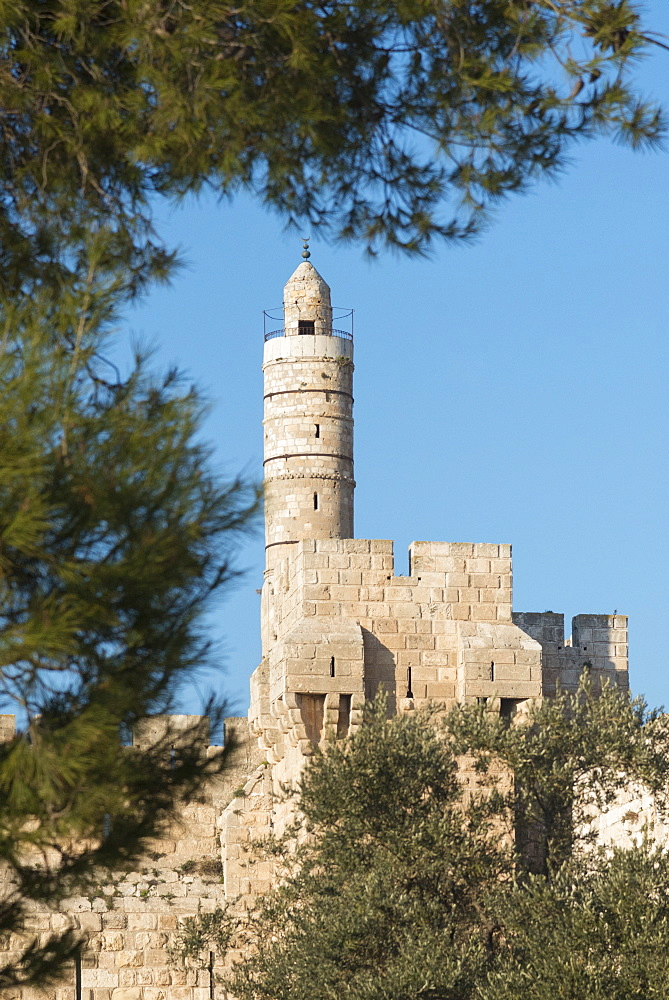Tower of David through trees, Jerusalem Old City, Israel, Middle East