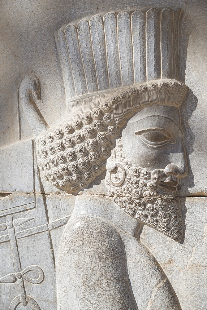 Persepolis archeological site, Iran, Western Asia