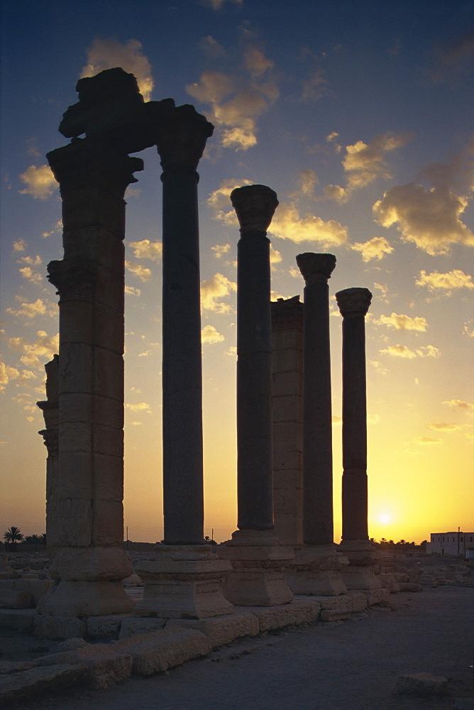 Sunrise on main street, Palmyra, UNESCO World Heritage Site, Syria, Middle East