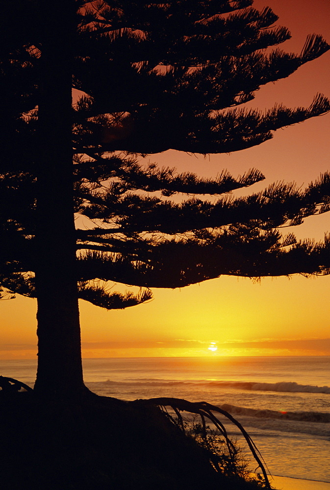 Sunrise, Pine Beach, Gisborne, East Coast, North Island, New Zealand, Pacific - 581-2059