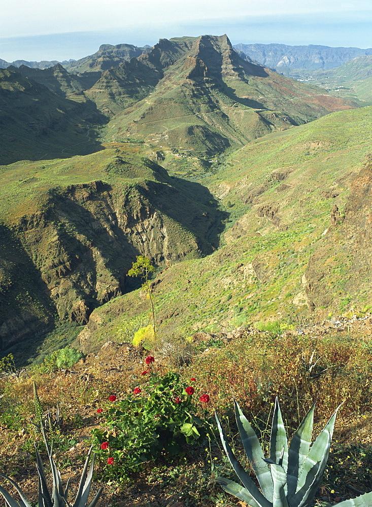Barranco de Fataga looking north from a viewpoint towards Cumbre de Trujillo, 1146m, Barranco de Fataga, Gran Canaria, Canary Islands, Spain, Europe