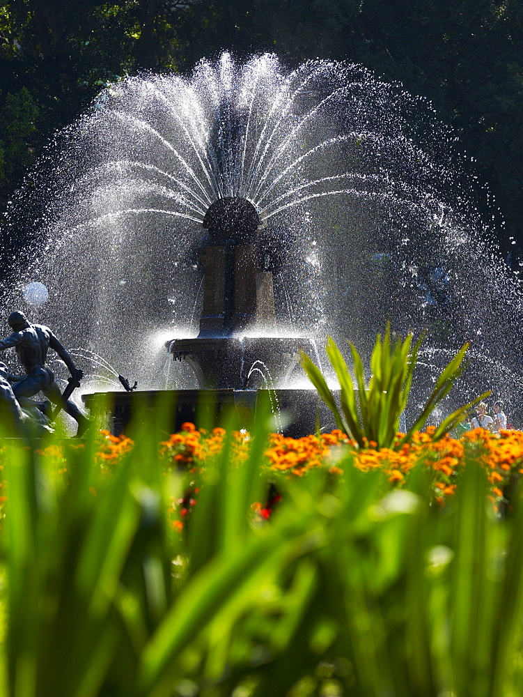 Fountain, Hyde Park, Sydney, New South Wales, Australia, Pacific