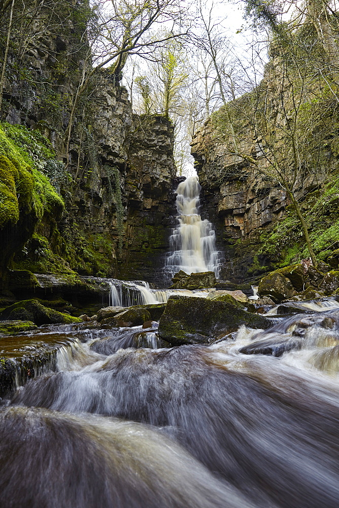 Mill Gill Force waterfall, Askrigg, Wensleydale, North Yorkshire, Yorkshire, England, United Kingdom, Europe