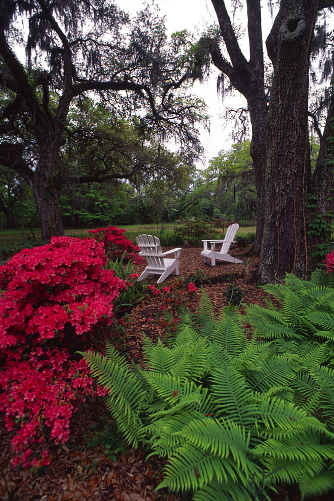 Goodwood Plantation, Tallahassee, Florida