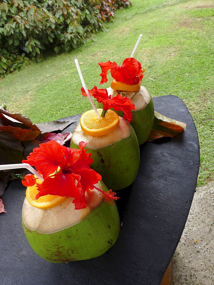 Coconut drinks, Yasawa Island Resort and Spa, Yasawa Islands, Fiji, Pacific