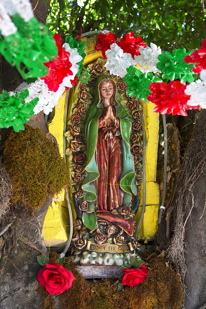 Virgin of Guadalupe, Puerto Vallarta, Jalisco, Mexico, North America - 632-5416