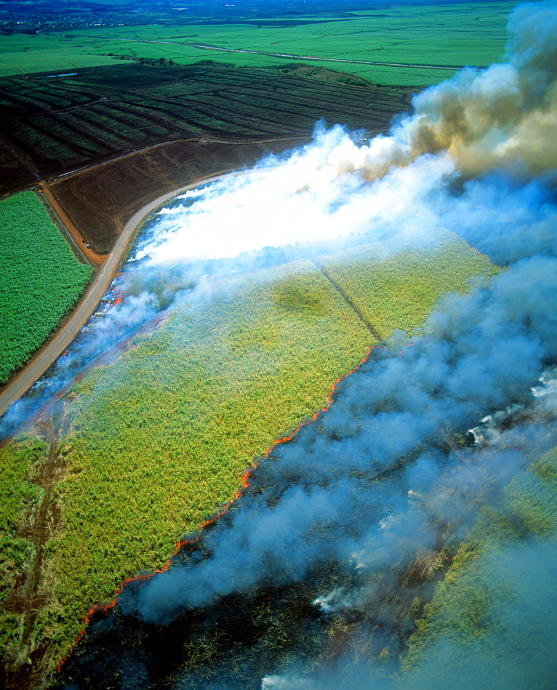 Burning sugar cane field, Maui, Hawaii, United States of America, Pacific - 632-5601