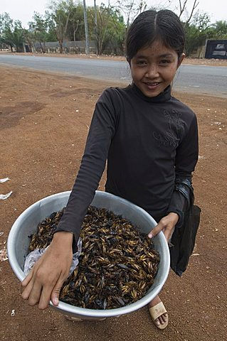 Cooked crickets for sale, Cambodia, Indochina, Southeast Asia, Asia