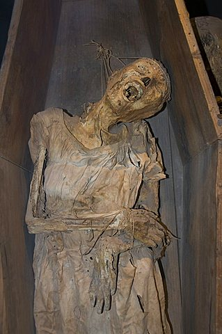 Mummy of a Chinese girl, in the Mummy Museum (Museo de las Momias) in Guanajuato, a World Heritage Site, Guanajuato, Guanajuato State, Mexico, North America