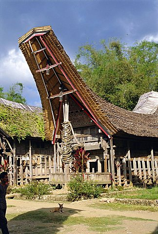 Typical house and granary, Toraja area, Sulawesi, Indonesia