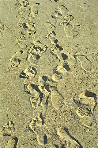 Footprints in sand on beach, Reethi Rah, Maldive Islands, Indian Ocean, Asia