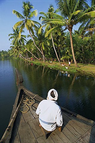 Boat on a typical backwater, fringed with palm trees, where house boats used for tourists, Kerala, India, Asia