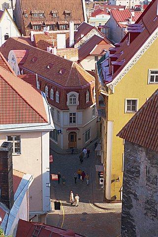 Old Town, Tallinn, Estonia, Baltic States, Europe - 641-3452