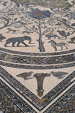 Roman floor mosaic, archaeological site of Volubilis, UNESCO World Heritage Site, Morocco, North Africa, Africa