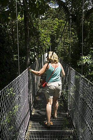 Hanging Bridges, a walk through the rainforest, Arenal, Costa Rica, Central America - 641-5969