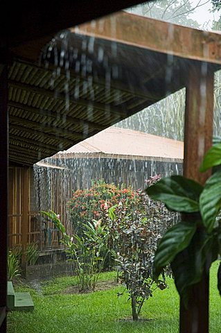 Torrential rain, Tortuguero National Park, Caribbean Coast, Costa Rica, Central America