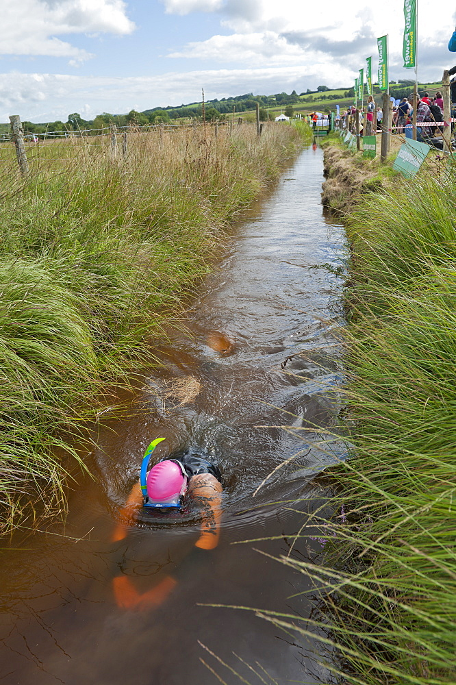 World Bogsnorkelling Championships, conceived in 1985 by Gordon Green, take place at Waen Rhydd Bog in the Cambrian Mountains, Powys, Wales, United Kingdom, Europe - 663-830