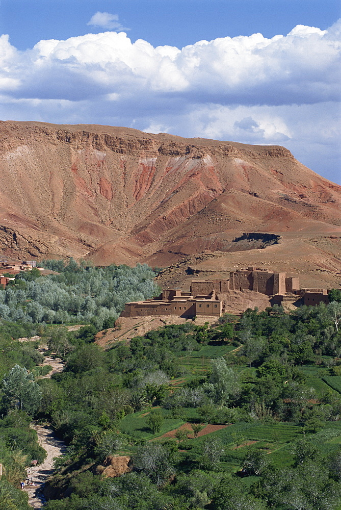High angle view of oasis, Dades Valley, Morocco, North Africa, Africa