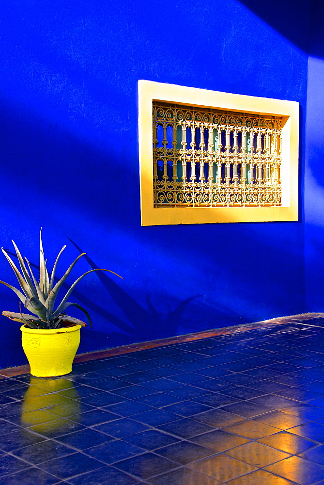 Detail of blue house and yellow plant pot in Majorelle Garden, Marrakech, Morocco, North Africa, Africa