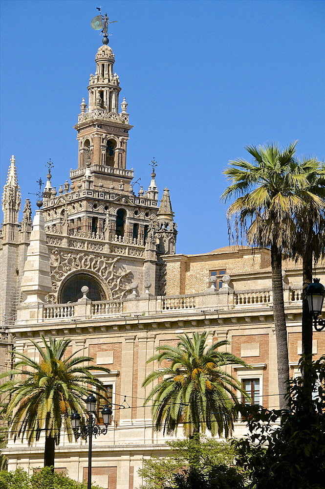 Cathedral and Giralda, Seville, UNESCO World Heritage Site, Andalusia, Spain, Europe - 665-5437