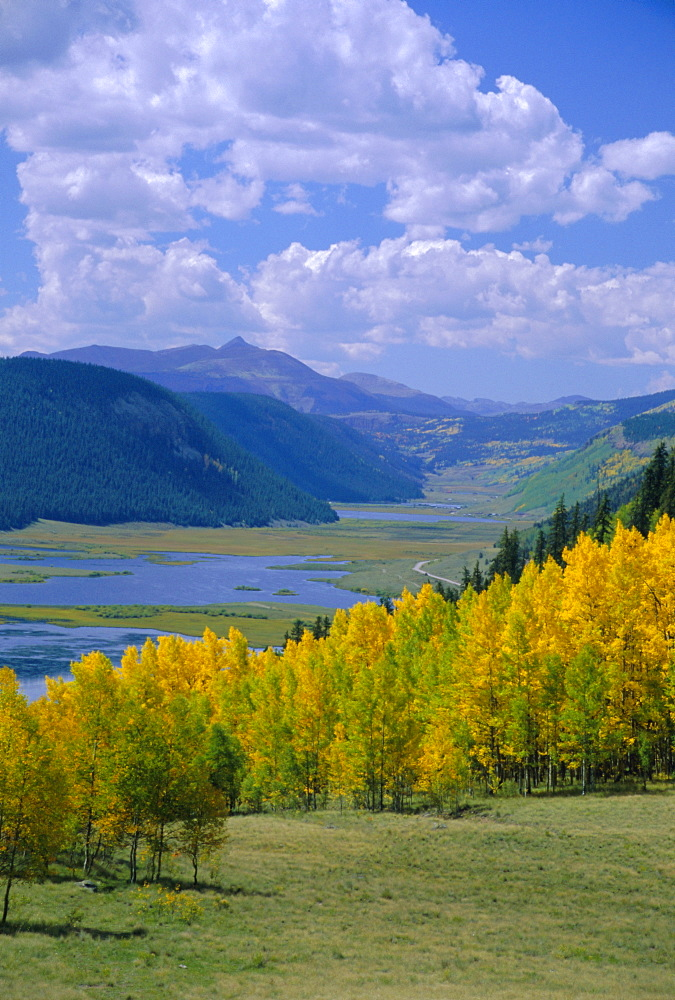 Rio Grande National Forest, Colorado, USA