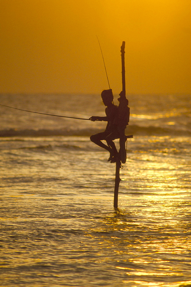 Stilt fisherman (pole fisherman), Sri Lanka, Asia