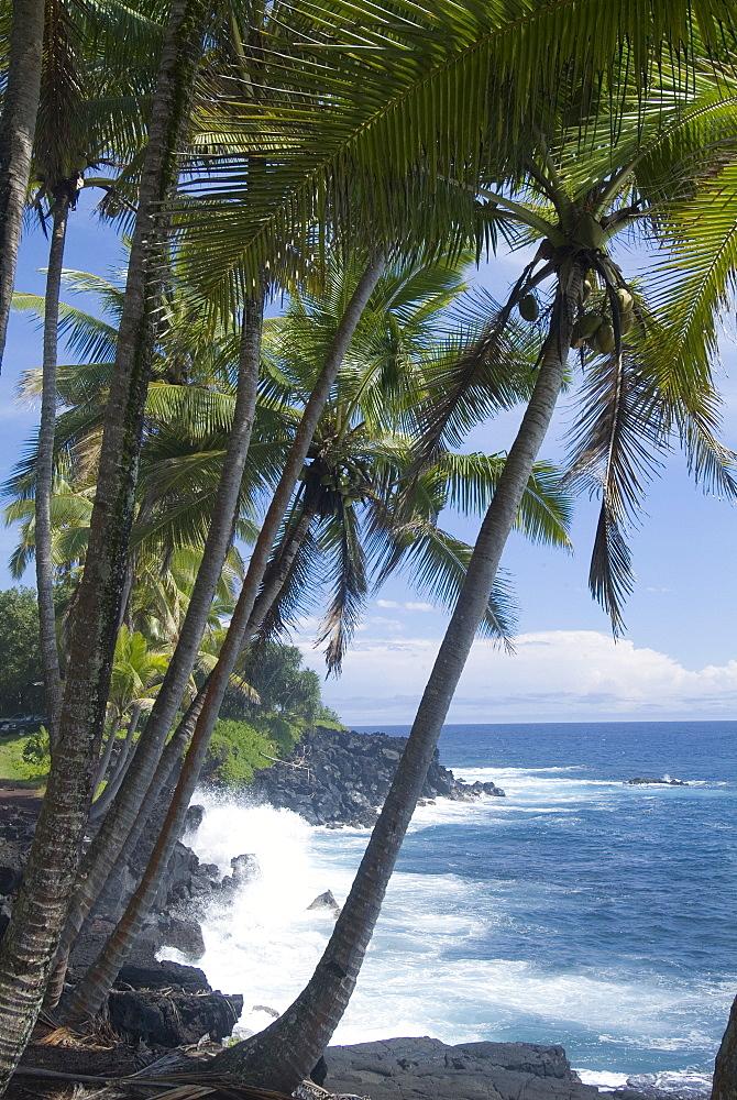 Puna (Black Sand) Beach, Island of Hawaii (Big Island), Hawaii, United States of America, Pacific, North America