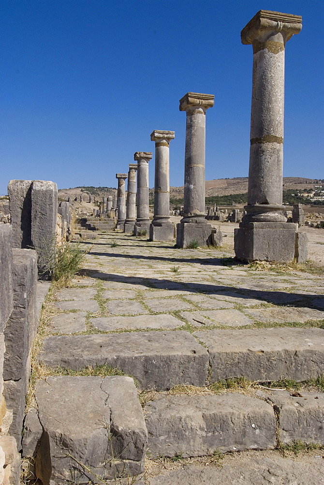 Decumanus Maximus (main east west road), Roman site of Volubilis, UNESCO World Heritage Site, Morocco, North Africa, Africa