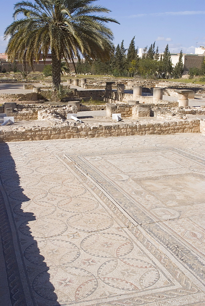 Remains of the House of Africa Roman villa, Museum, El Djem, Tunisia, North Africa, Africa