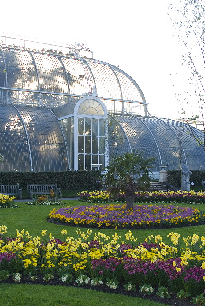Palm House, Royal Botanic Gardens (Kew Gardens), UNESCO World Heritage Site, Kew, Greater London, England, United Kingdom, Europe