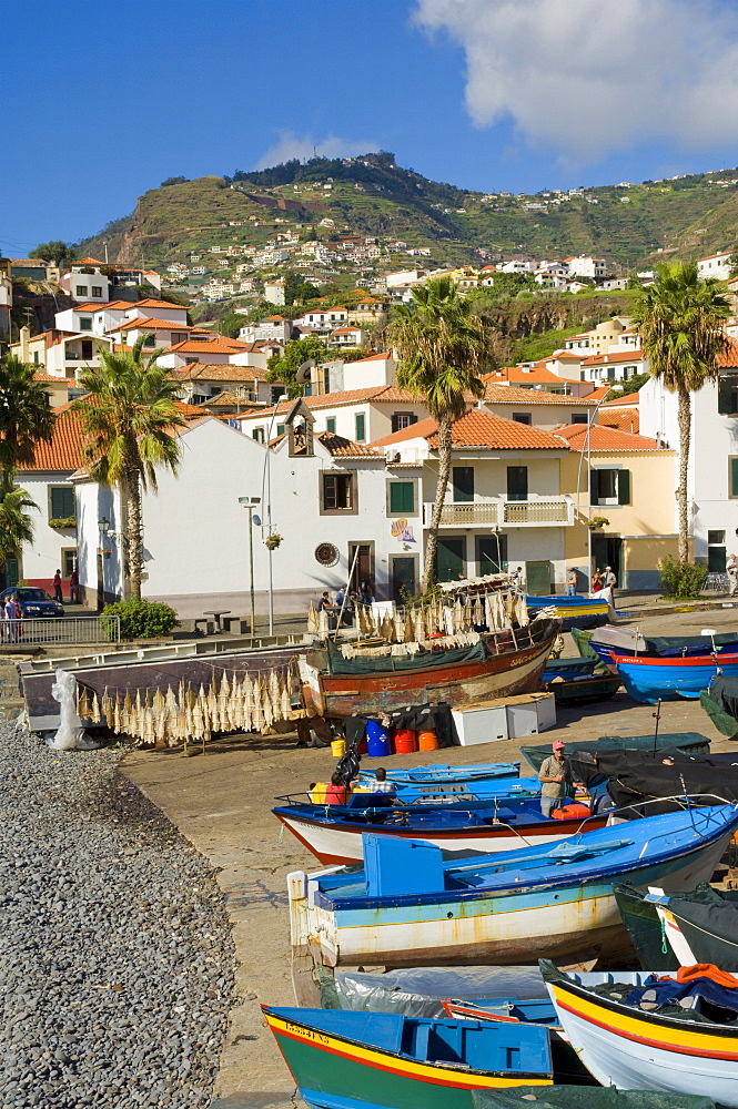 Drying salt cod (bacalhau) and fishing boats in the small south coast harbour of Camara de Lobos, Madeira, Portugal, Atlantic, Europe