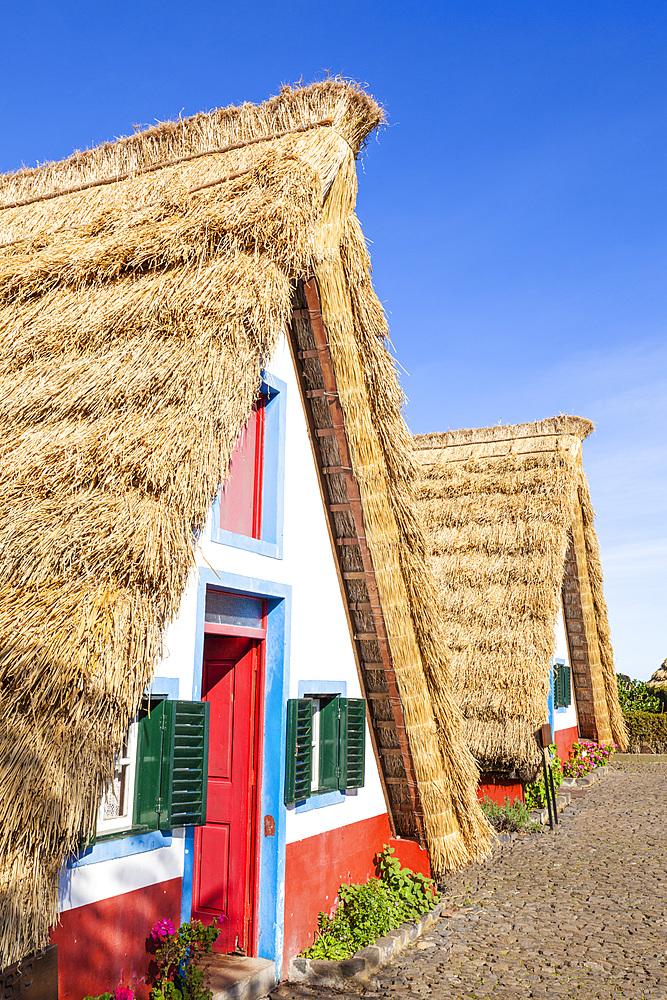 Traditional triangular thatched A-framed Palheiro Houses, Santana, Madeira, Portugal, Atlantic, Europe - 698-3394