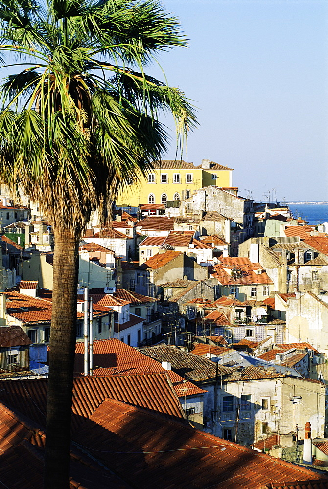View of Alfama district and the Tagus River, Lisbon, Portugal, Europe