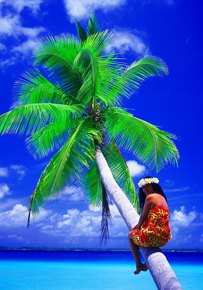Portrait of woman sitting halfway up a coconut palm, Tuamotus Archipelago, French Polynesia, Pacific Islands