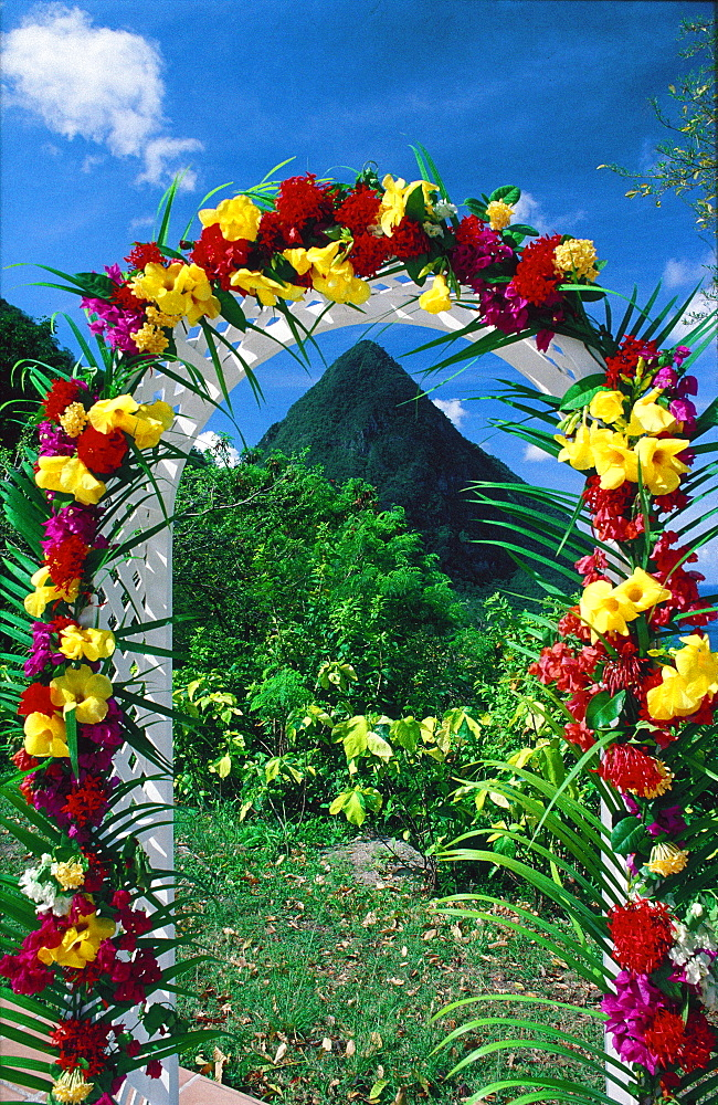 Petit Piton surrounded with flowers, St Lucia